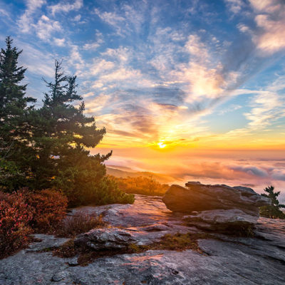 5 Reasons to Move to the Beautiful State of North Carolina